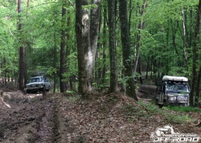 Transylvanian Forest Offroad